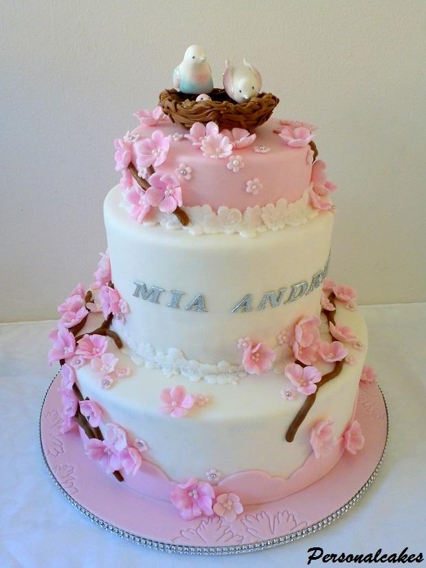 Personalcakes2 Torte Americane Su Misura